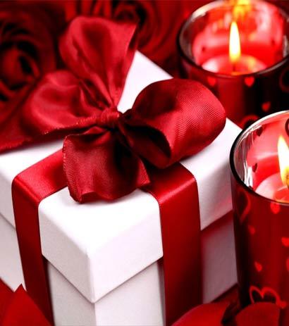 Flores que você pode oferecer no Natal
