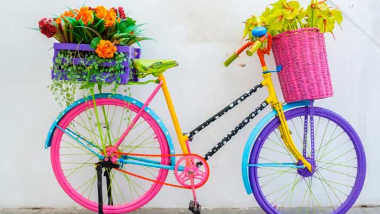 flores-promocao-ferias