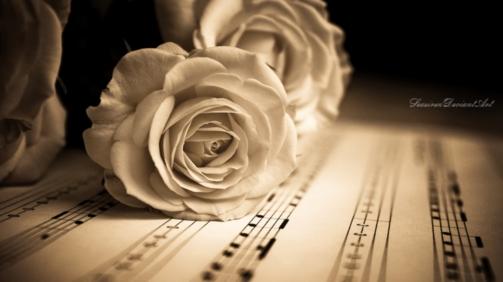 rosas-falam