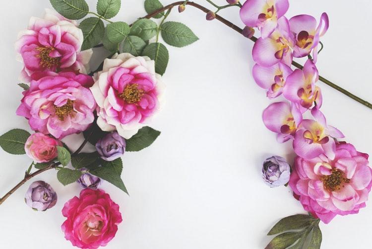 descubra as flores para o dia dos finados