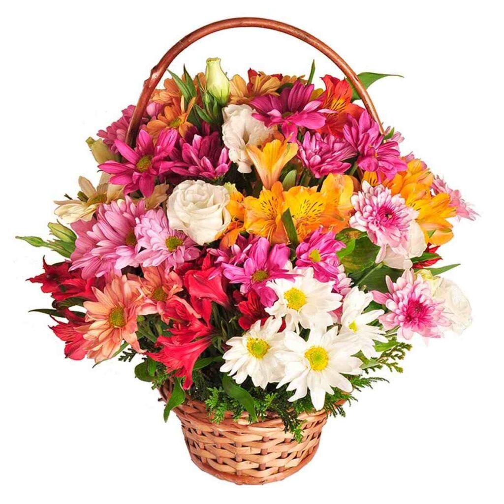 presente dia dos professores cesta de flores