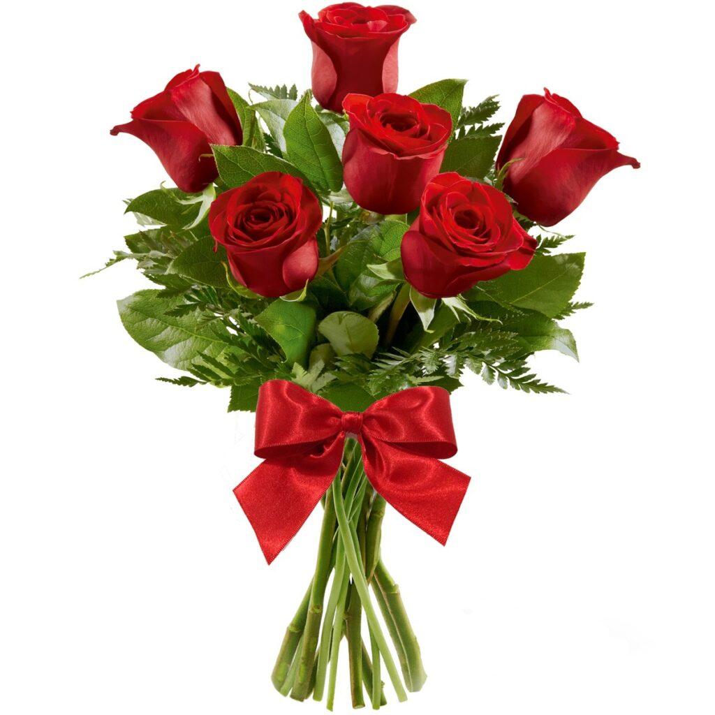 presente dia dos professores charme 6 rosas