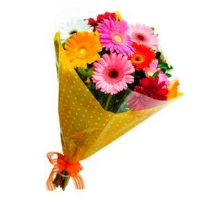 gérberas são flores ótimas para plantar em vaso
