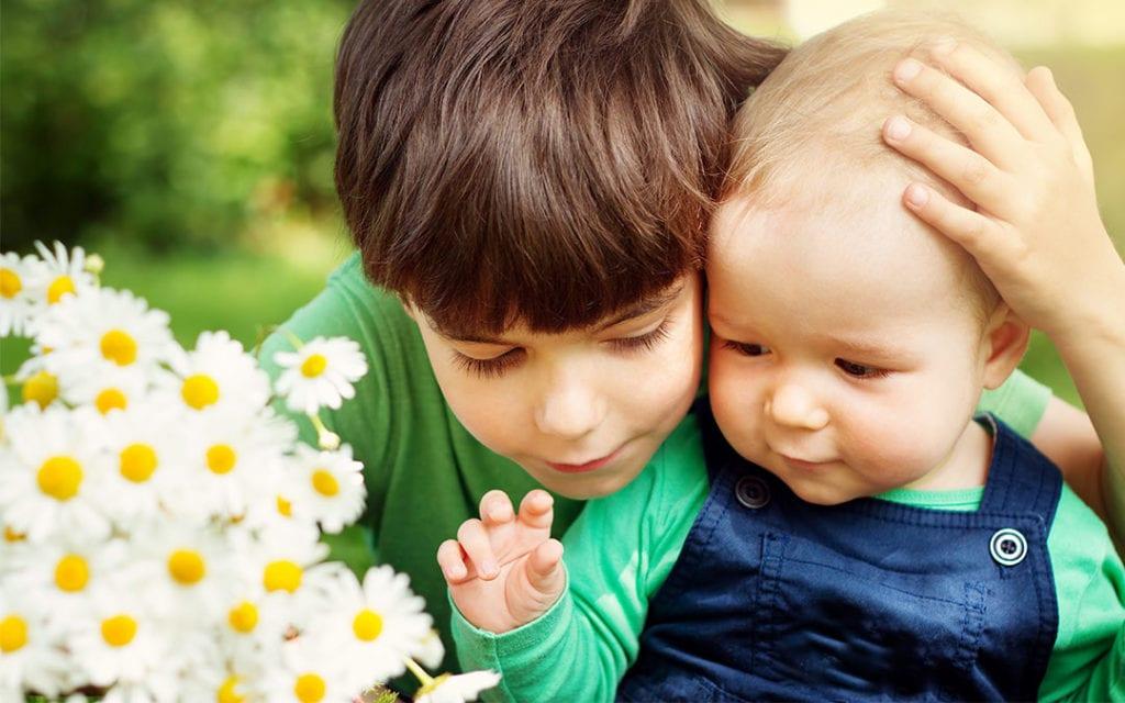 Dia dos Irmãos: Comemore Com Flores
