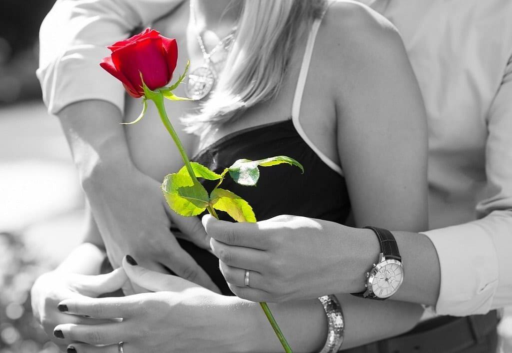 flores para dar de presente rosas