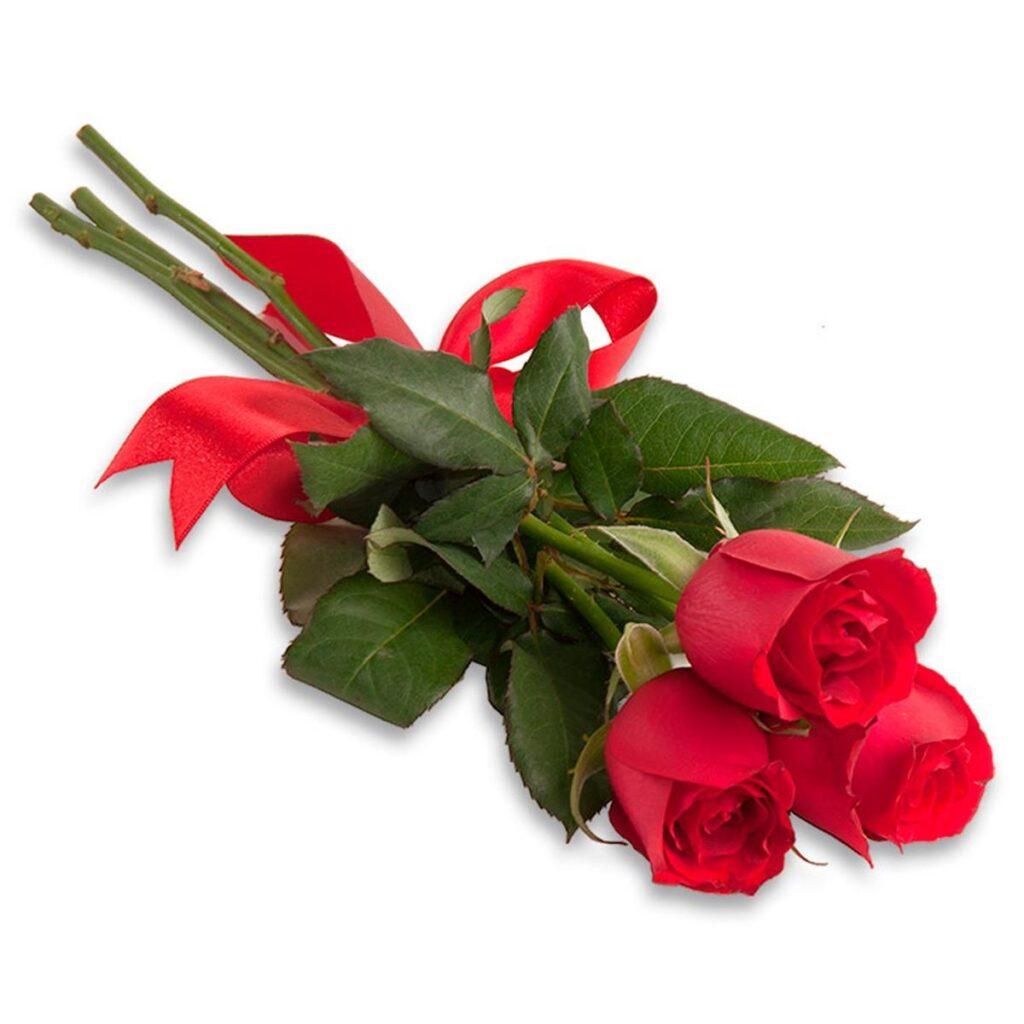 presentes para mulher rosas