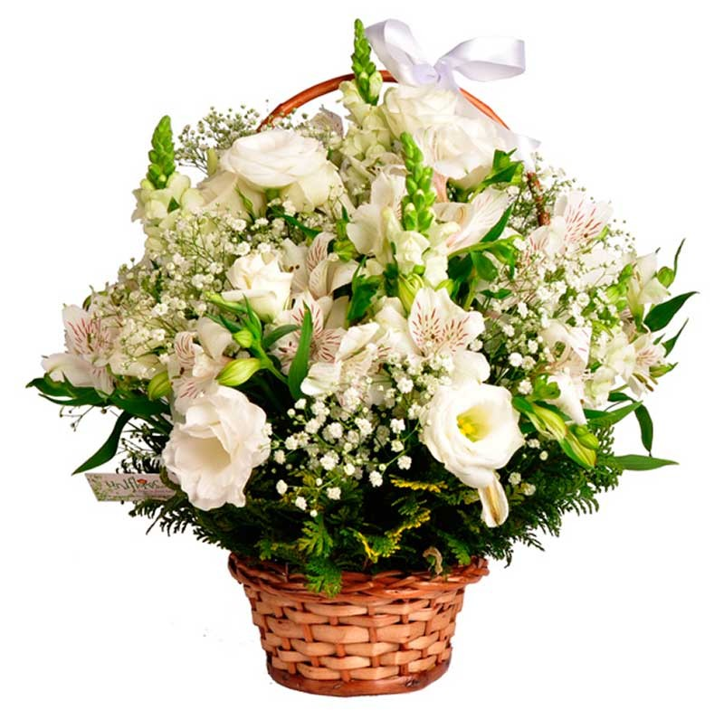 presentes 15 anos cesta de flores brancas