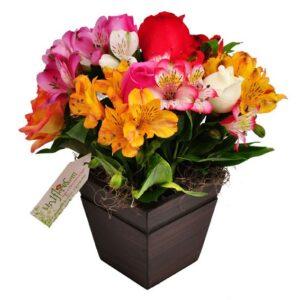Festa das Flores