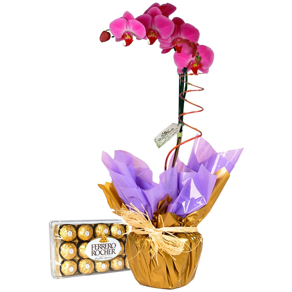flor de cada signo orquidea